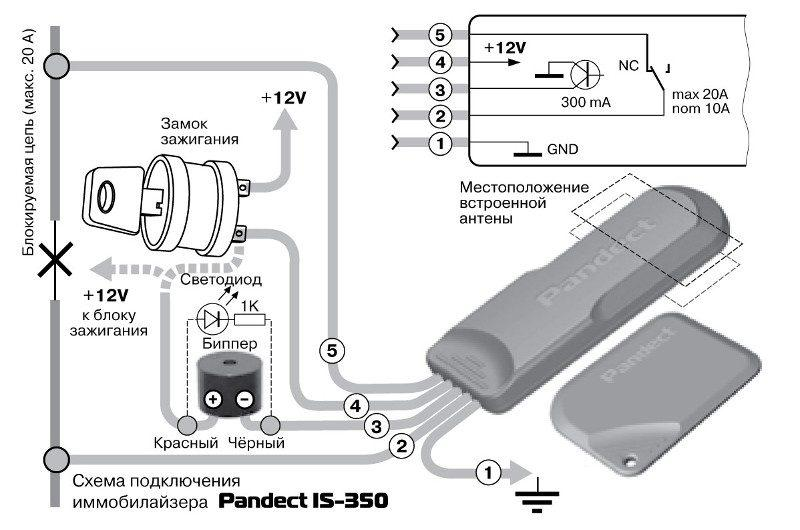 skhema-podklyucheniya-immobilayzera-pandect-is-350