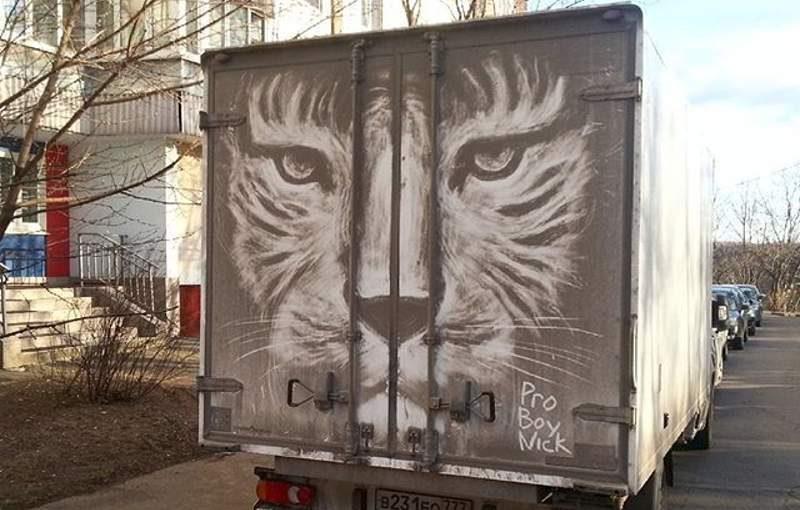 Тигр на грязном автомобиле